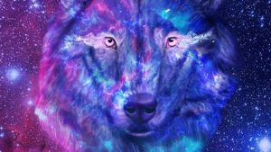 Anime Galaxy Wolf Wallpapers – Top Free Anime Galaxy Wolf Backgrounds