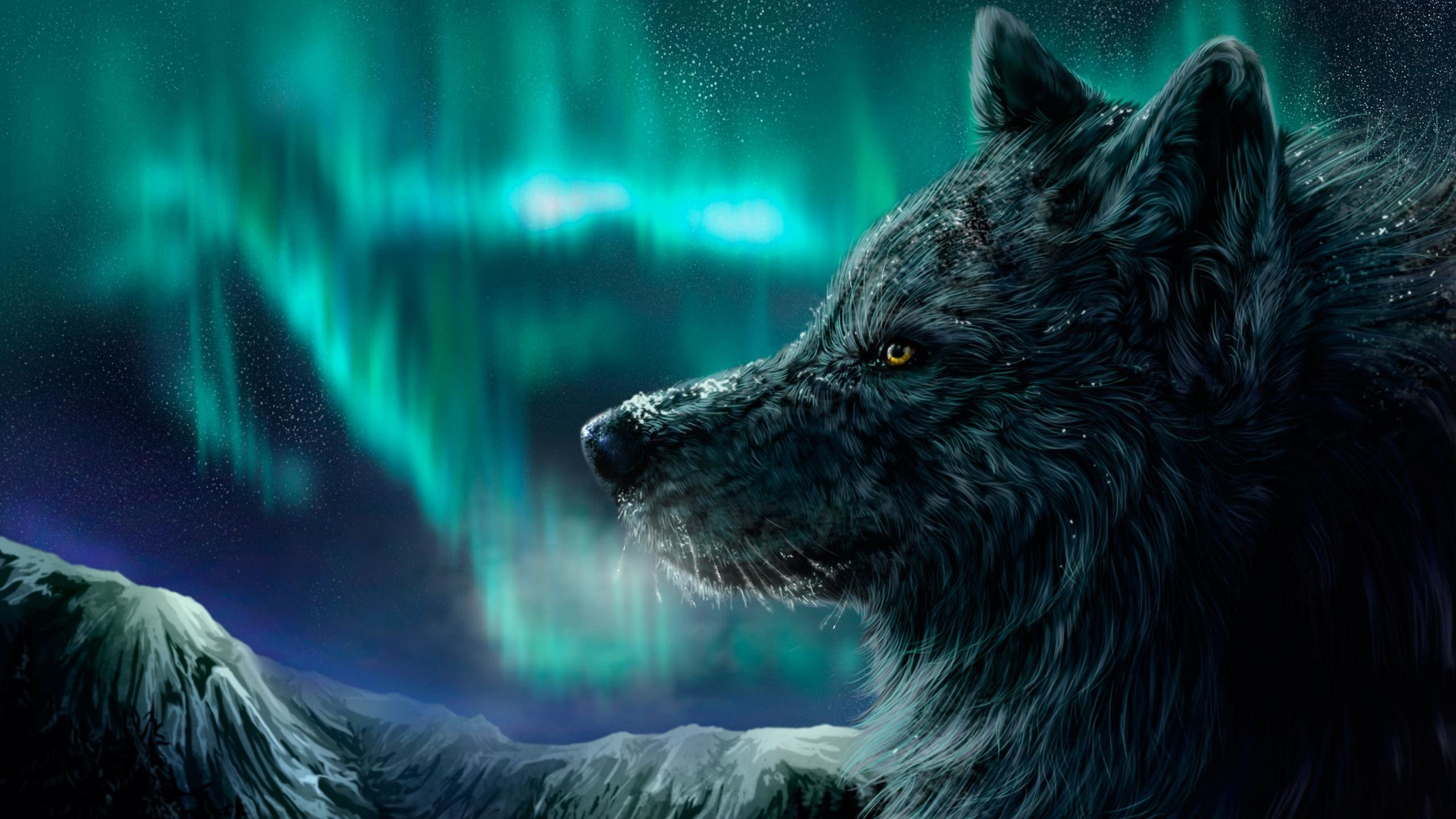 2560x1440 Best Wolf wallpaper ID:118080 for High Resolution hd 2560x1440 PC