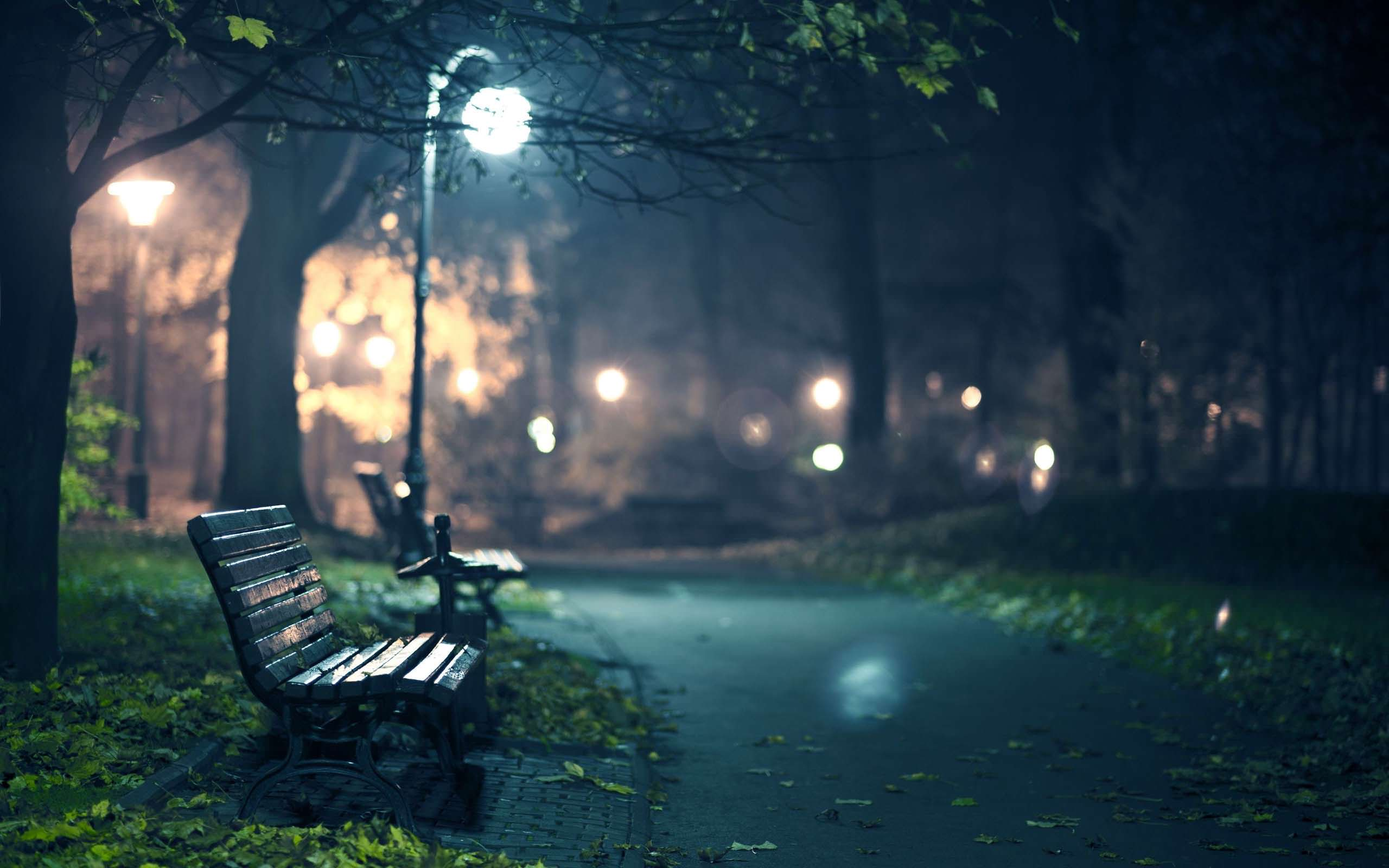 2560x1600 Photography Park Bench At Night Wallpaper 2560x1600 - Cool PC Wallpapers