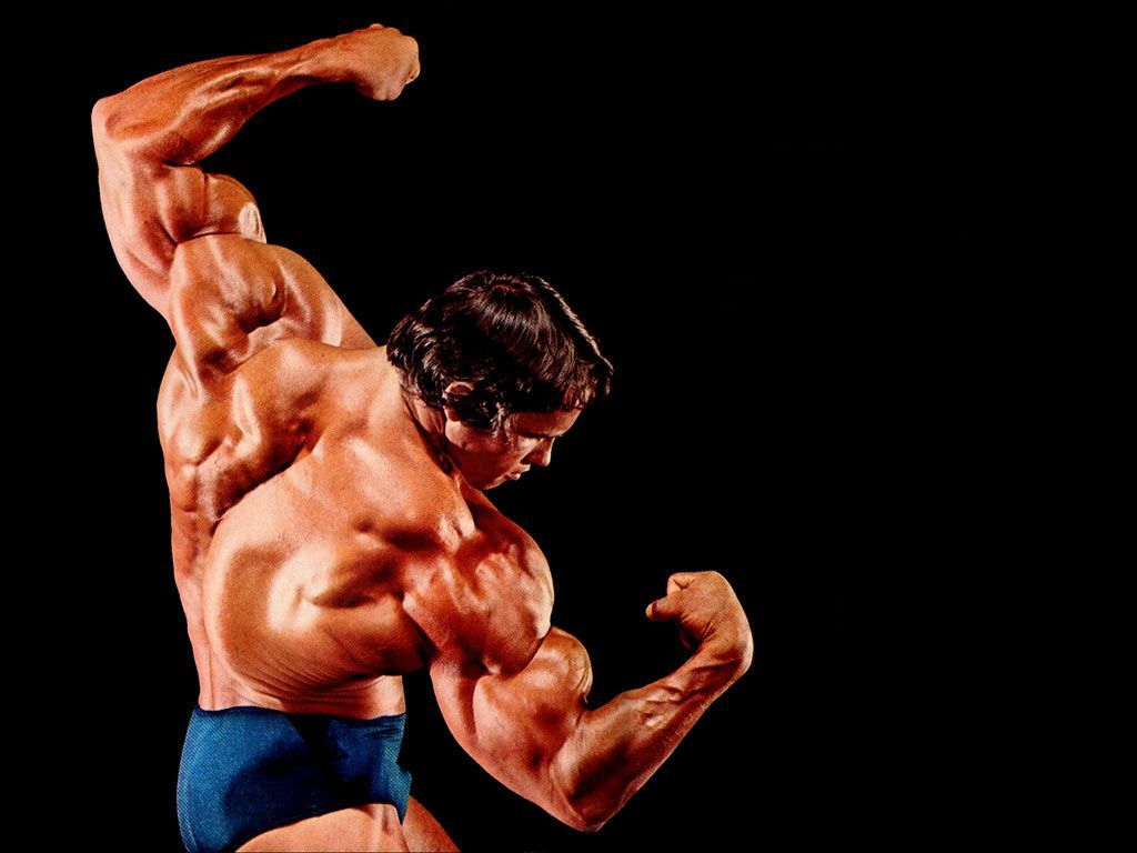 1024x768 Bodybuilding Wallpapers HD 2016 | chul soon ...