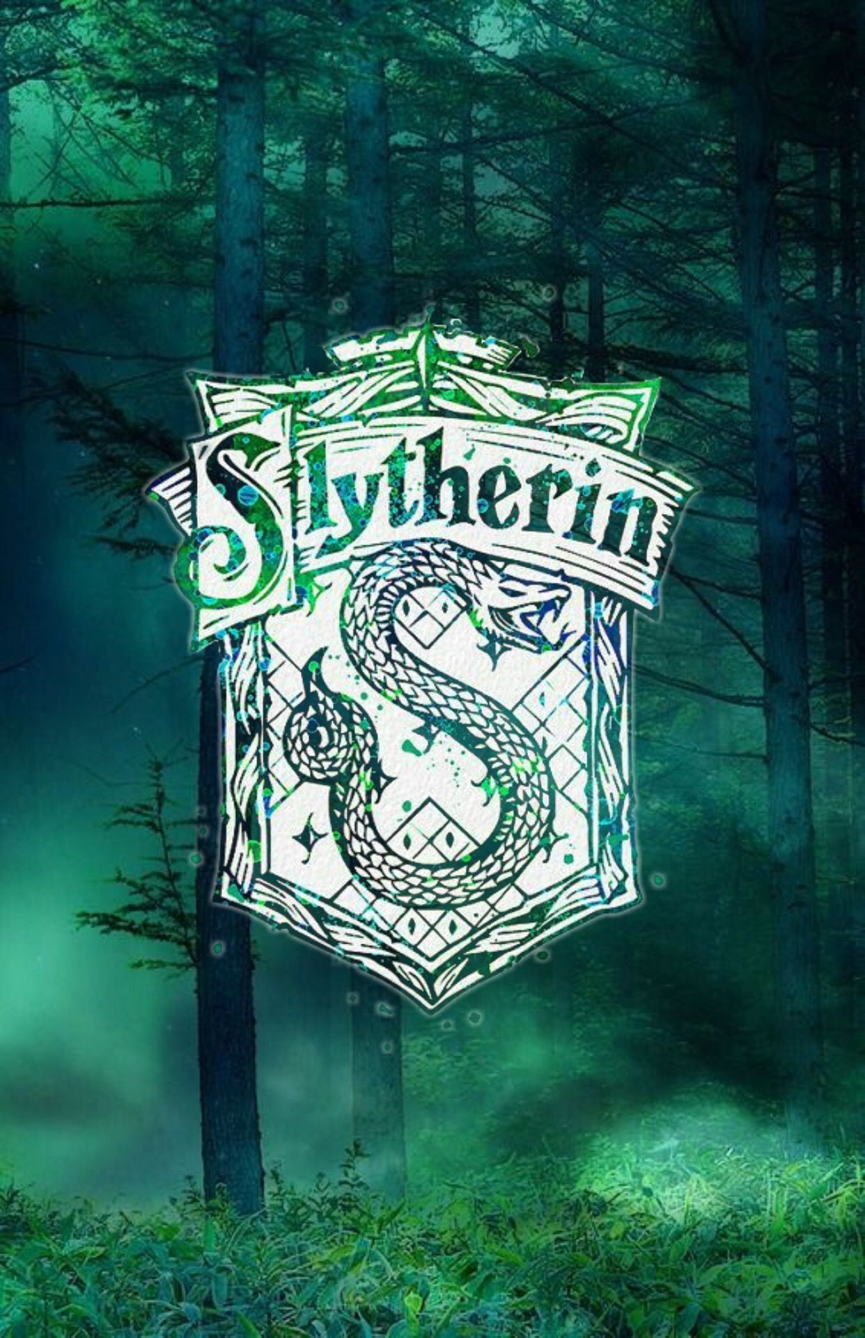 1242x1921 Harry Potter Wallpaper Awesome Slytherin Hogwarts Harry Potter ...