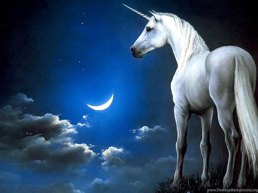 1024x768 Fantasy Unicorn Wallpapers Cool Hd Desktop Background