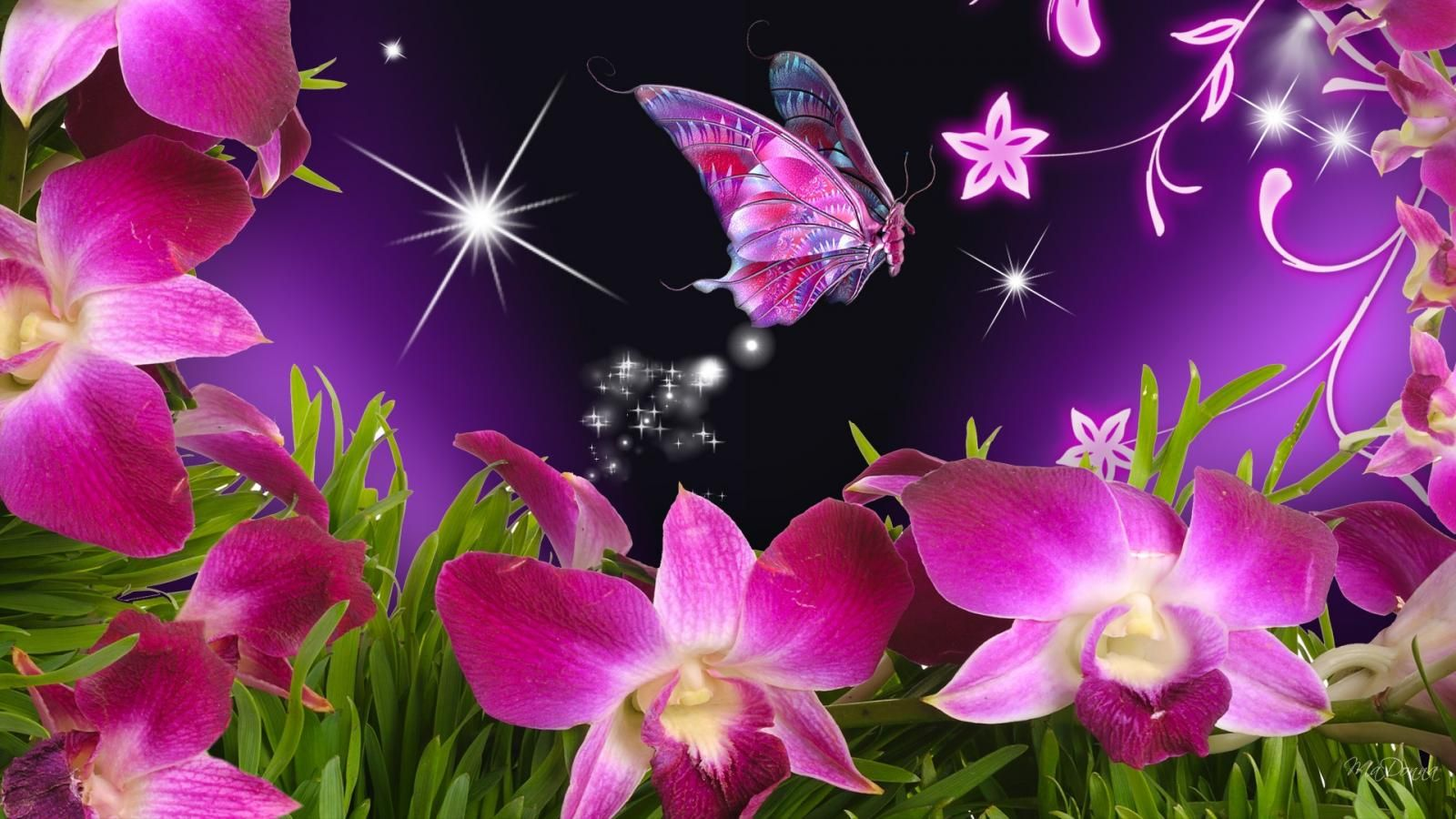 1600x900 Purple Butterfly and Stars Wallpaper | Download Wallpapers Nature ...