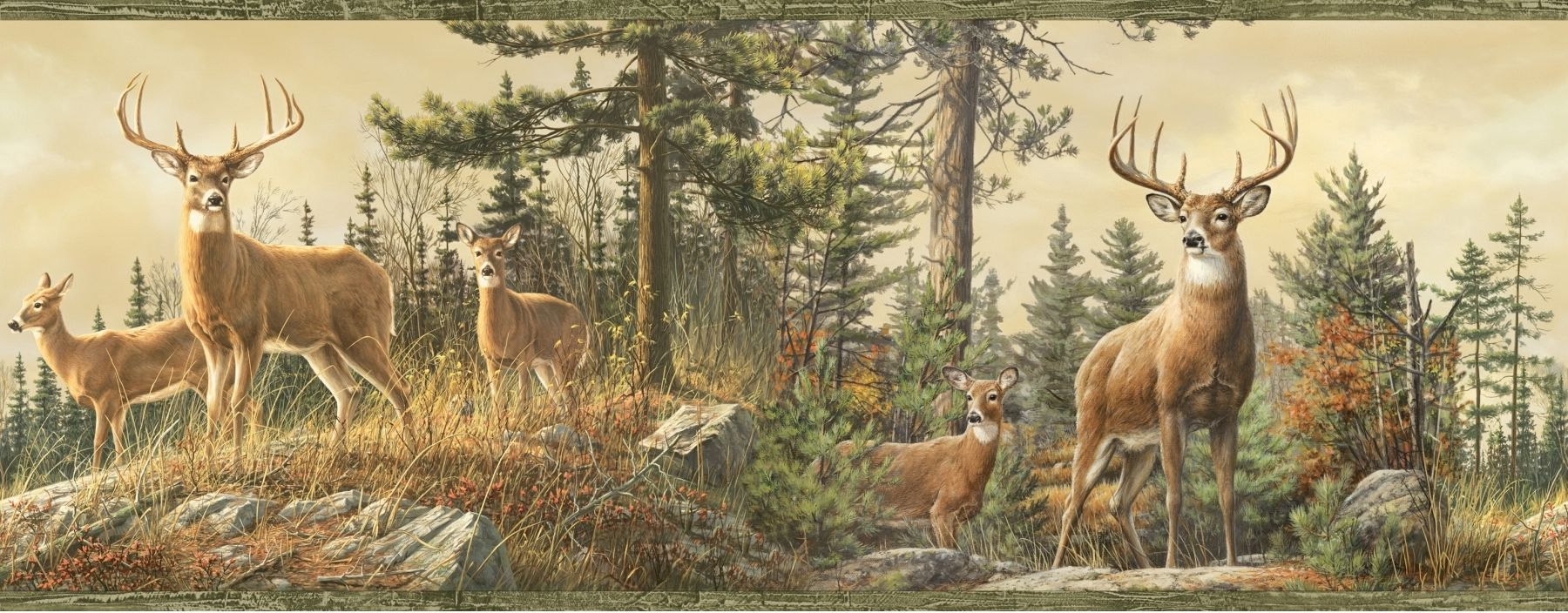 1800x704 Whitetail Crest Deer Wallpaper Border | Epic Car Wallpapers ...