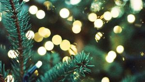 Christmas Tree Phone Wallpapers – Top Free Christmas Tree Phone Backgrounds