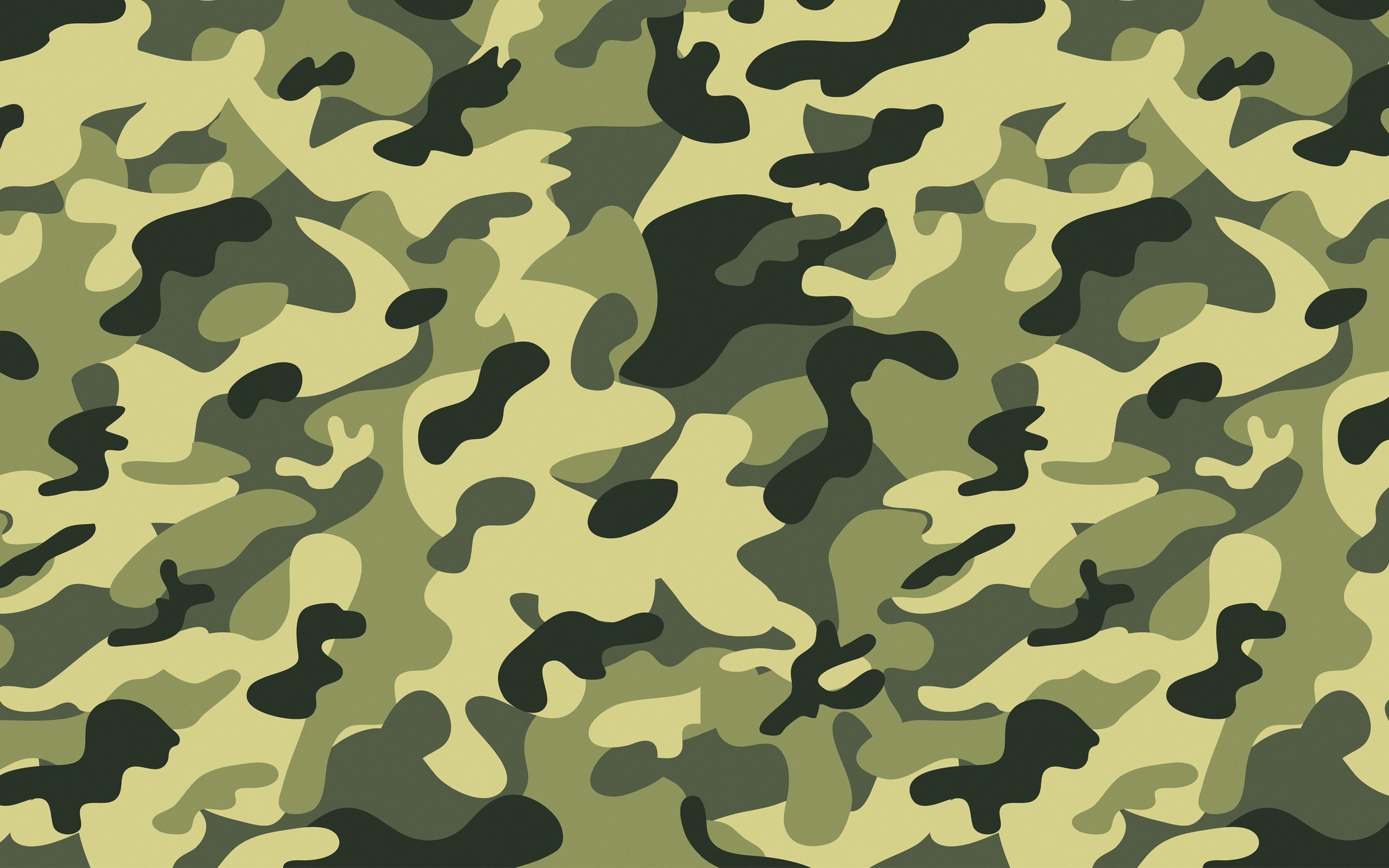 2560x1600 70+ Camouflage Desktop Wallpapers on WallpaperPlay