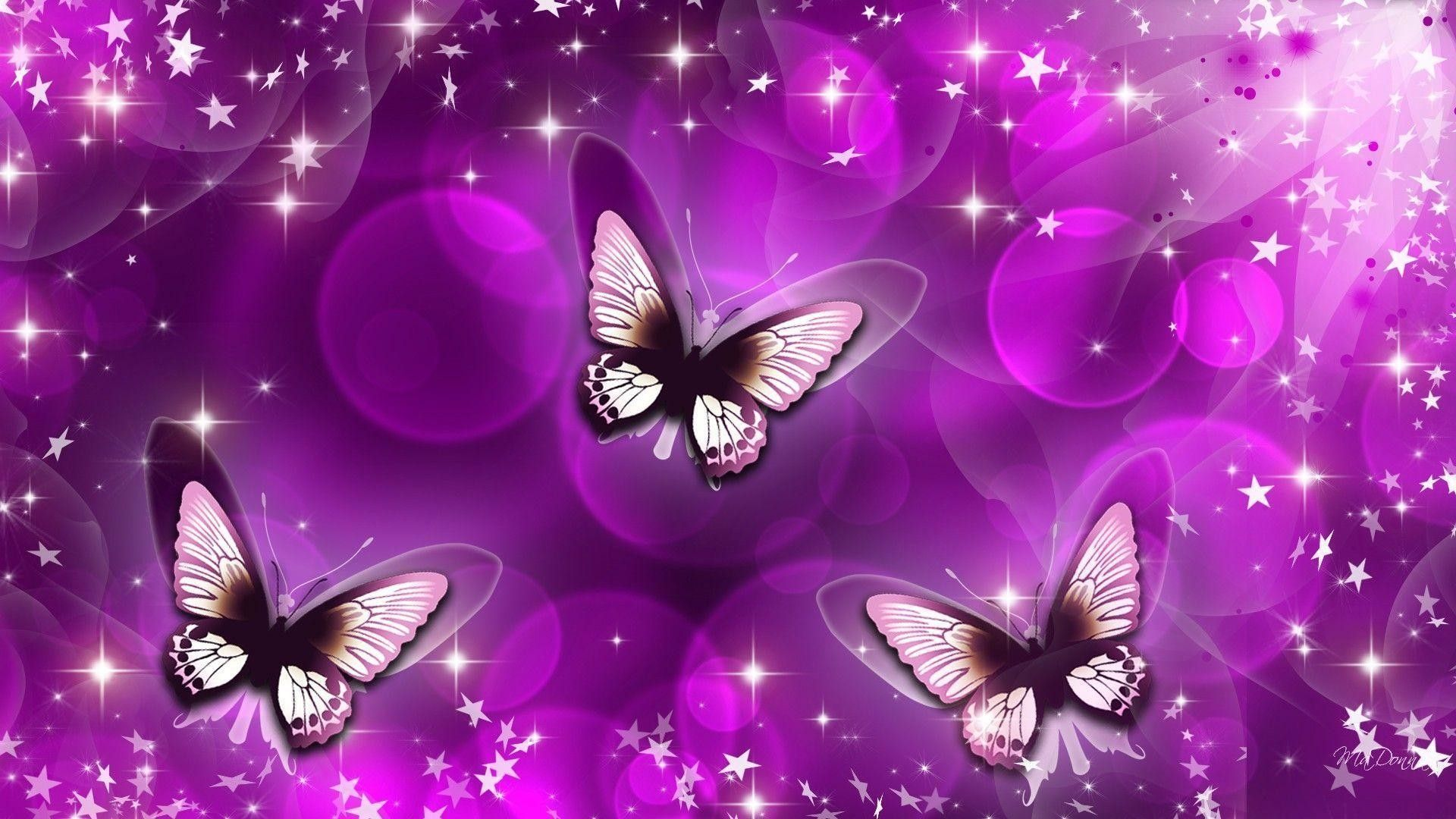 1920x1080 Purple Butterfly Wallpaper ·①
