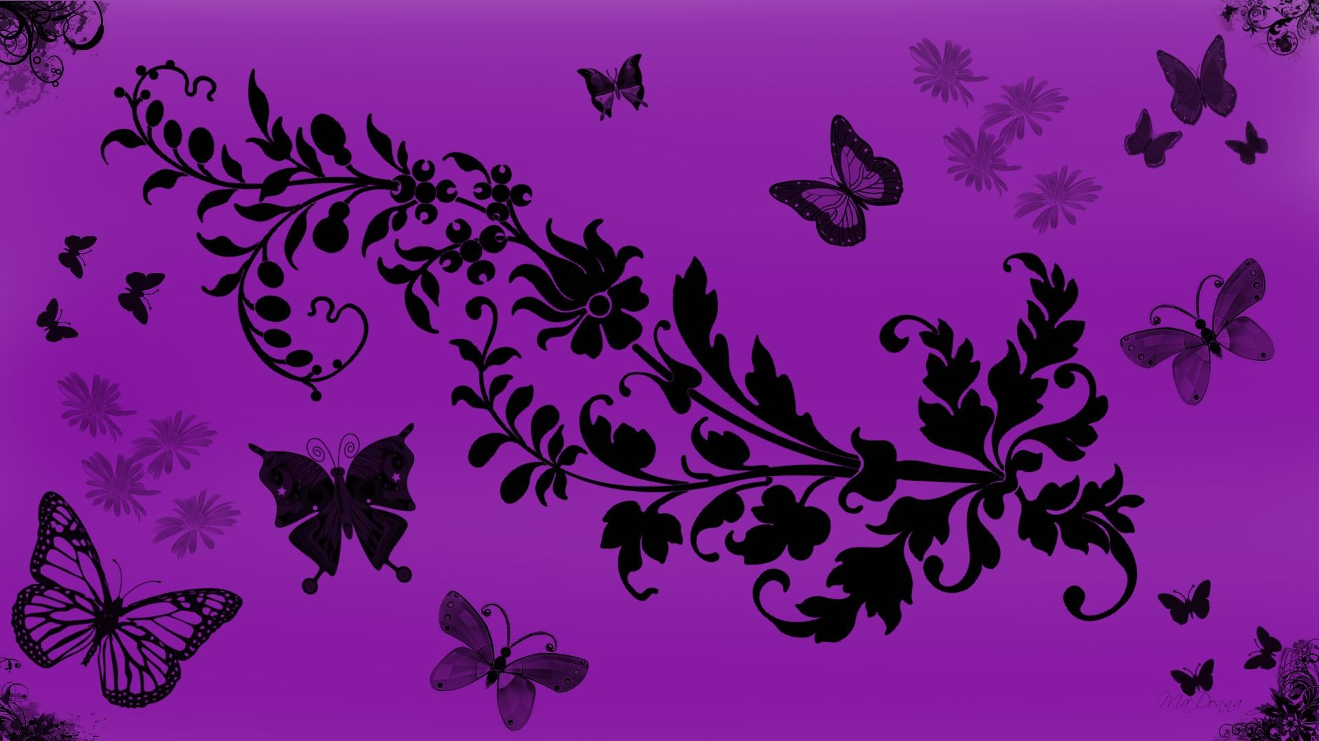 1920x1080 Purple Butterfly Wallpaper - Wallpapers Browse