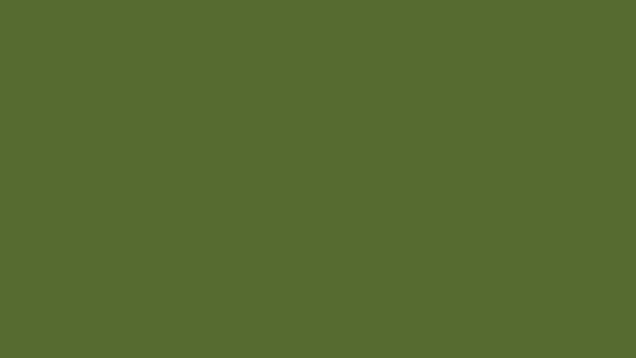1280x720 1280x720 Dark Olive Green Solid Color Background | Photography ...