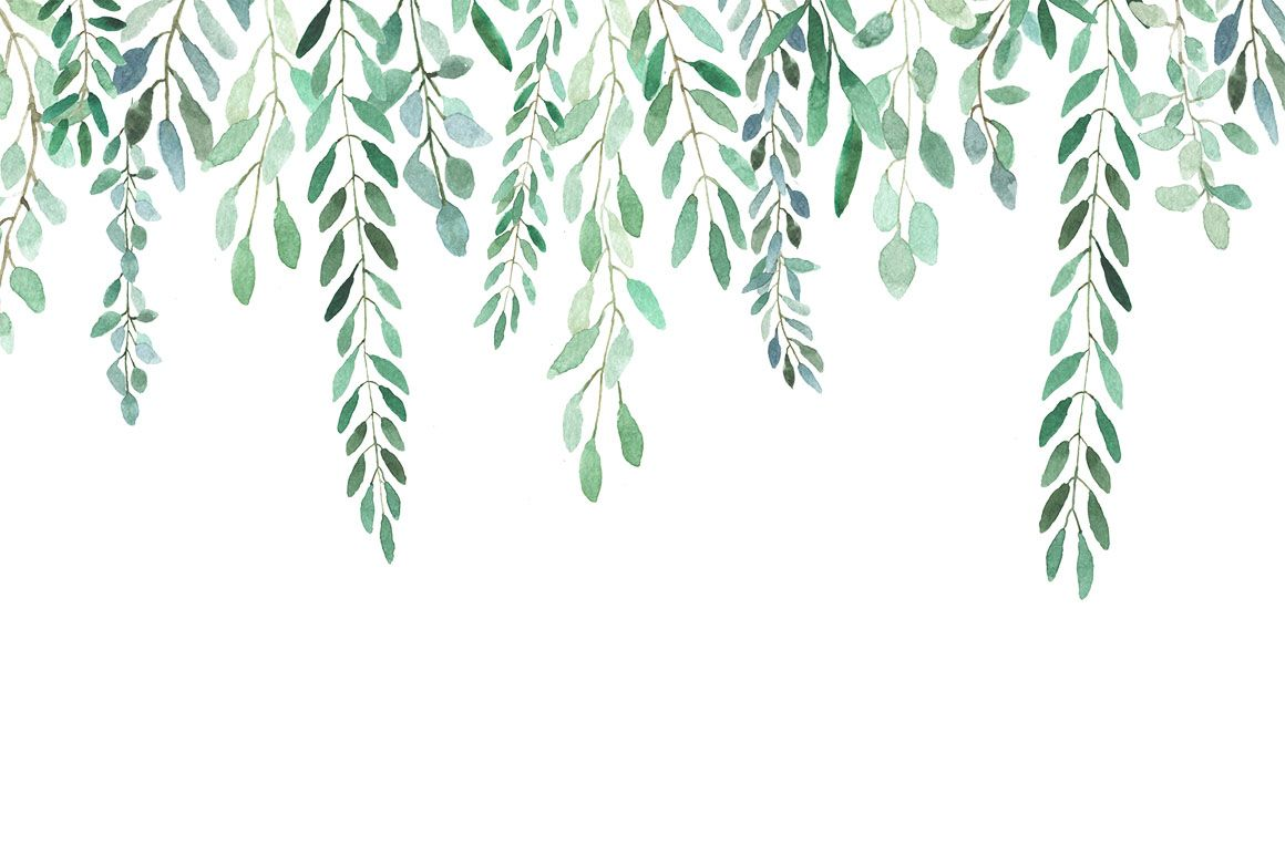 1160x773 All About Leaves - Watercolor by MariePierLaf on @creativemarket ...