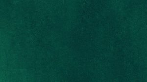 Green Color iPhone 6 Wallpapers – Top Free Green Color iPhone 6 Backgrounds