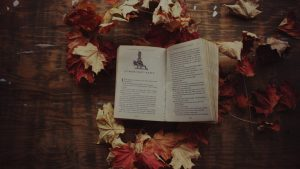 Harry Potter Autumn Wallpapers – Top Free Harry Potter Autumn Backgrounds