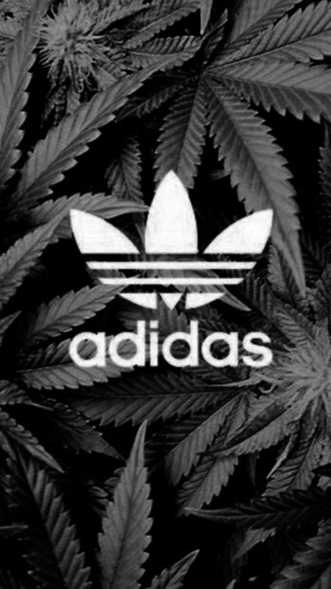 1080x1920 Huf Wallpapers (68+ images)