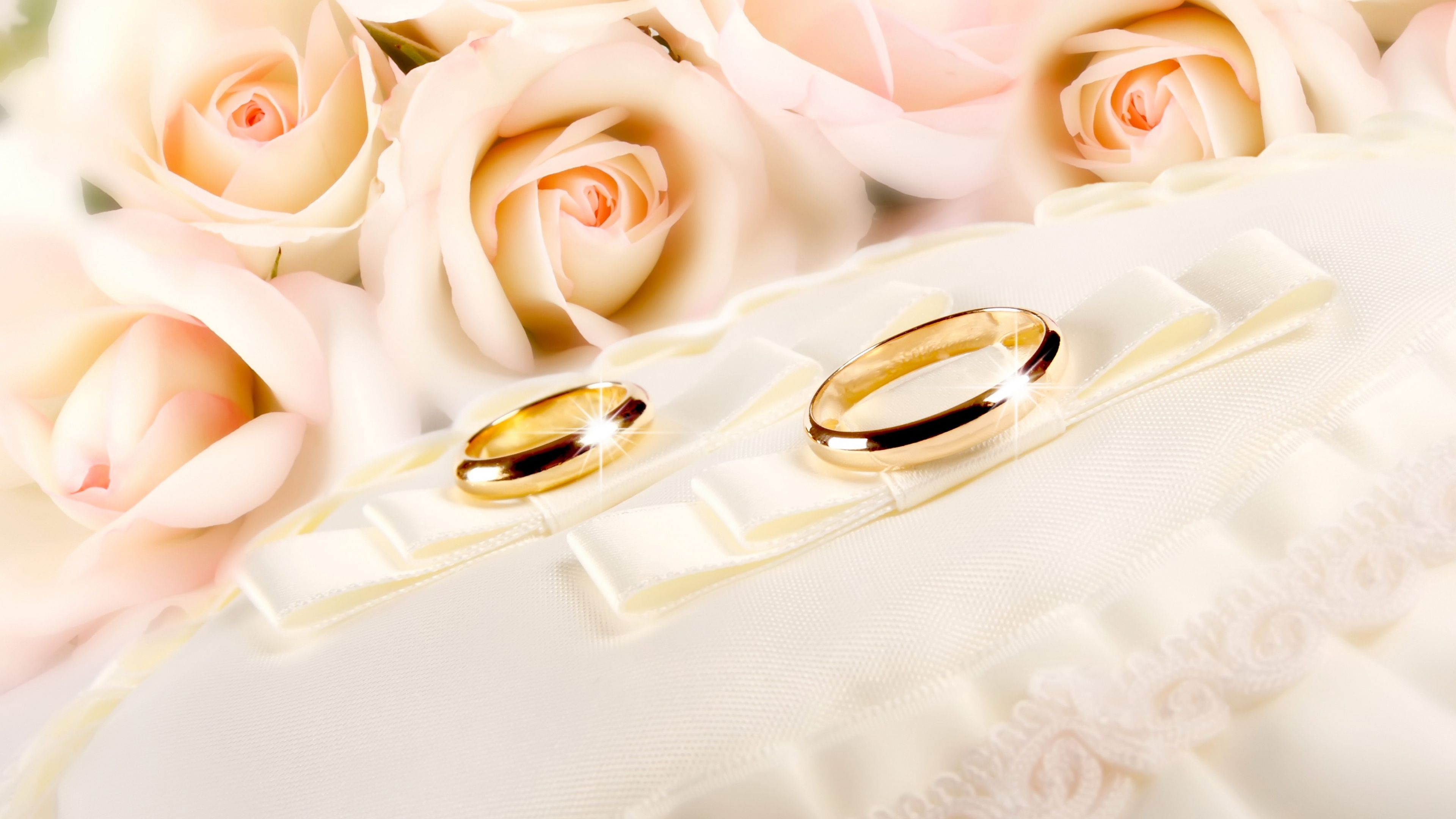 3840x2160 rings wedding gold glitter fabric flower rose backgrounds |