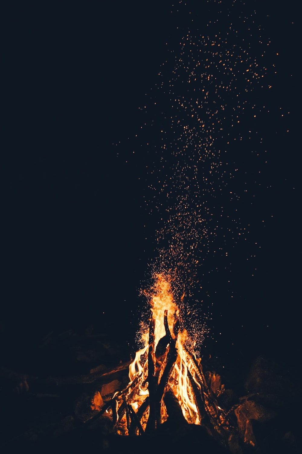 1000x1500 20+ Best Free Fire Pictures on Unsplash