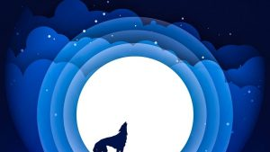 Wolf Moon iPhone Wallpapers – Top Free Wolf Moon iPhone Backgrounds