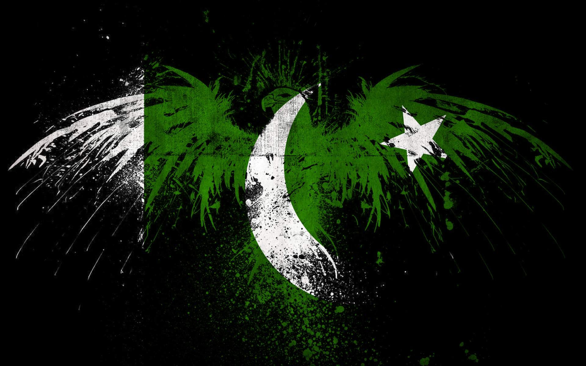1920x1200 Pakistani Flag HD Wallpaper | Background Image | 1920x1200 | ID ...