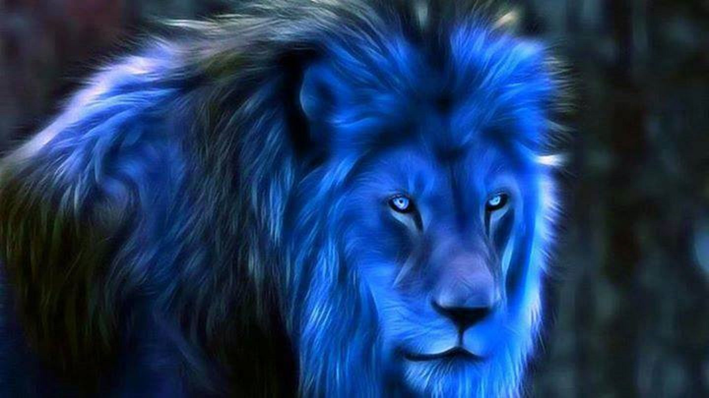 1440x810 Midnight Blue Fantasy #Blue #Lions #Wallpapers | Wallpapers ...