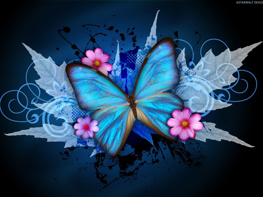 1024x768 cynthia-selahblue (cynti19) images Blue Butterfly HD wallpaper and ...