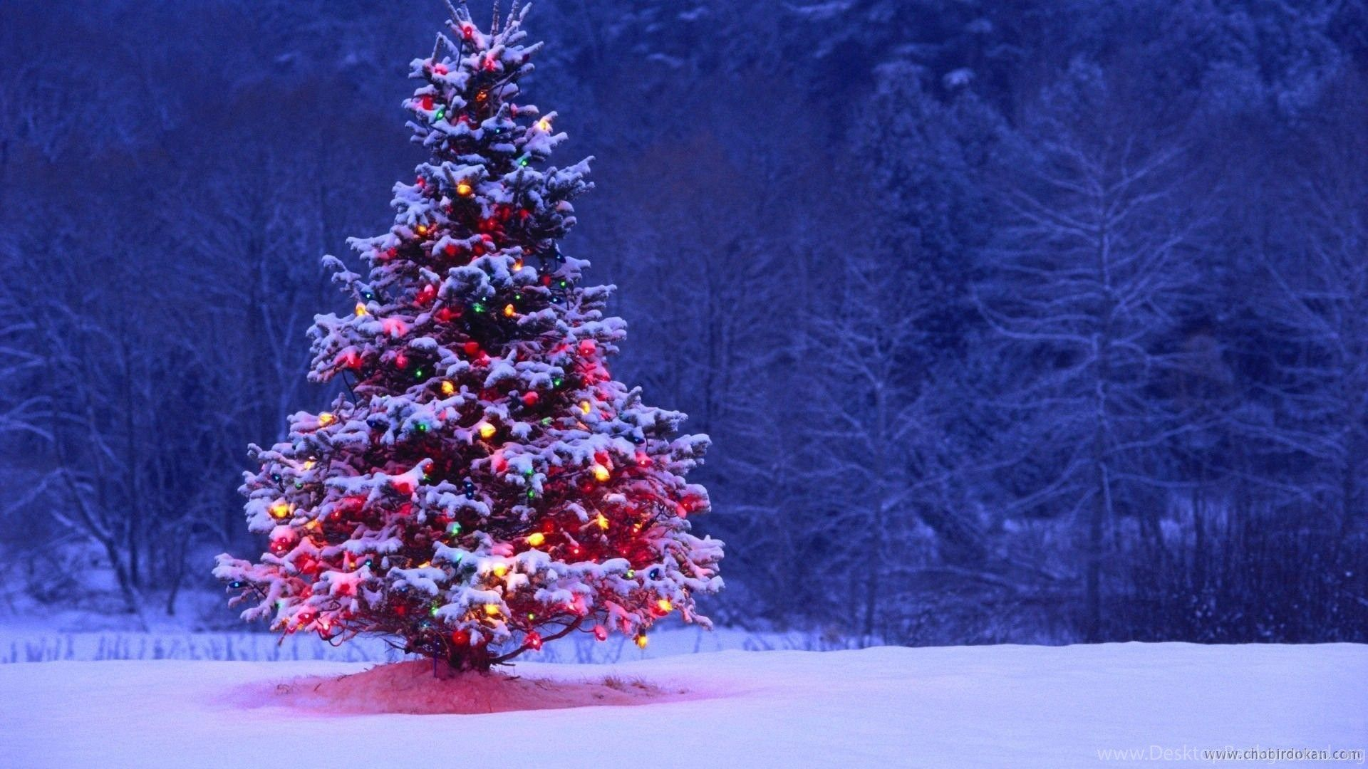 1920x1080 Cute Christmas Tree Backgrounds – Happy Holidays Desktop Background
