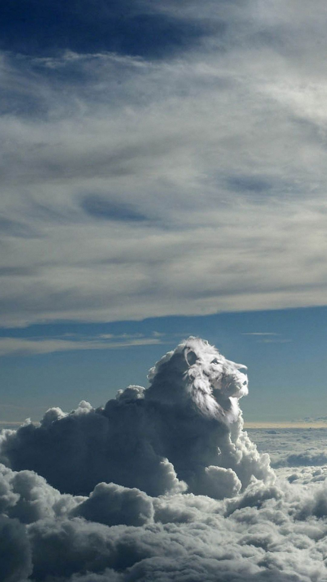 1080x1920 wallpaper.wiki-Cheetah-Clouds-Wallpaper-for-Phone-PIC-WPC006986 ...