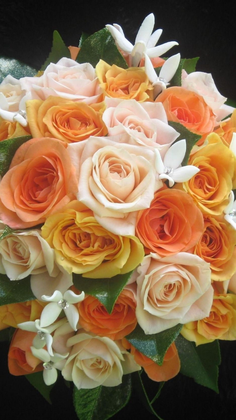 938x1668 Download wallpaper 938x1668 roses, flower, orange, leaf, black ...