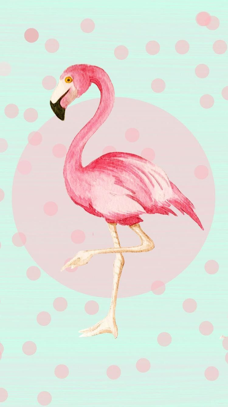 750x1334 Pin by Sydni Clendenin on Backgrounds in 2019 | Flamingo, Iphone ...