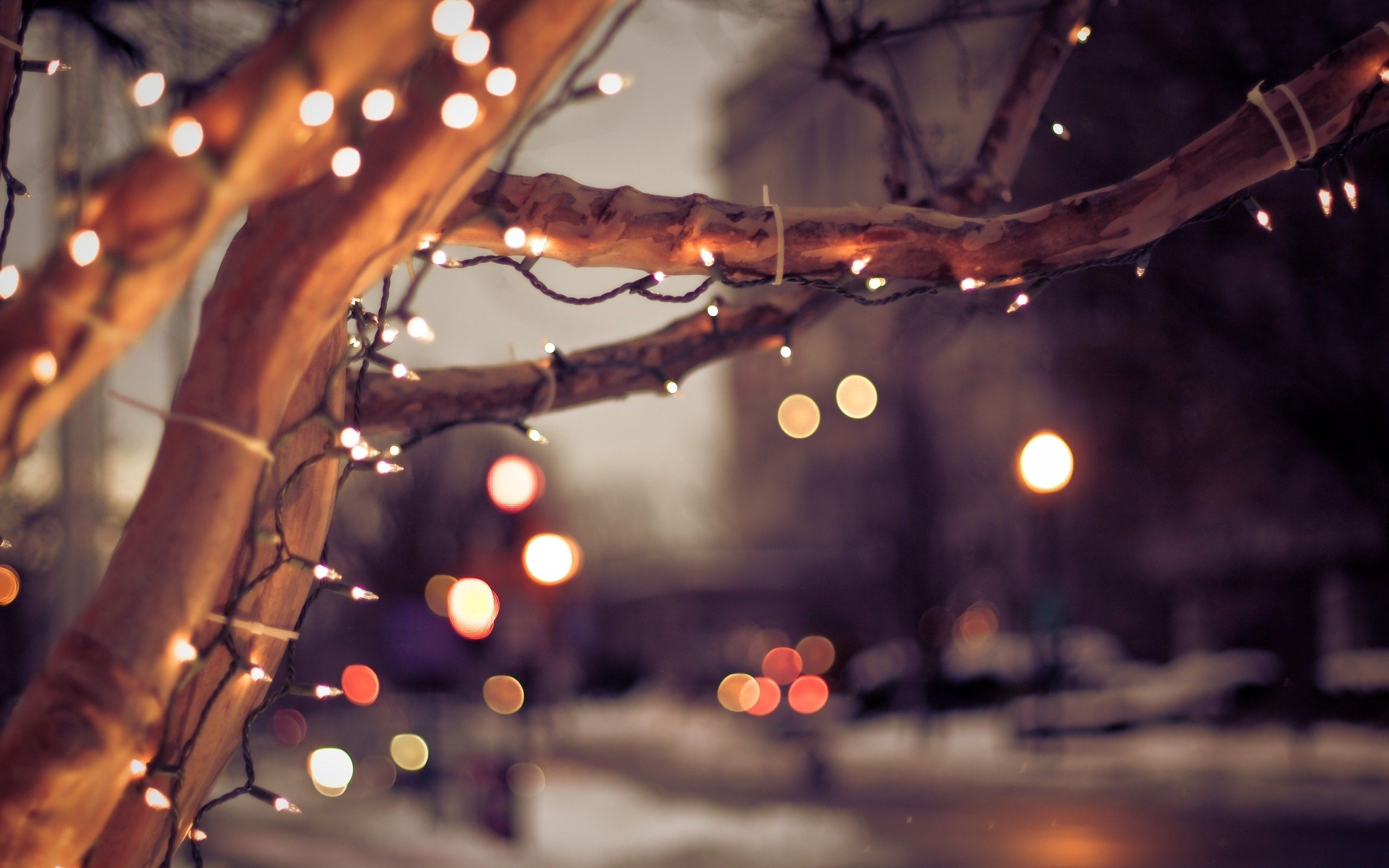 2560x1600 Free-Download-Christmas-Lights-Wallpaper-HD | wallpaper.wiki