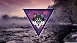Hipster Galaxy Wolf Wallpapers – Top Free Hipster Galaxy Wolf Backgrounds
