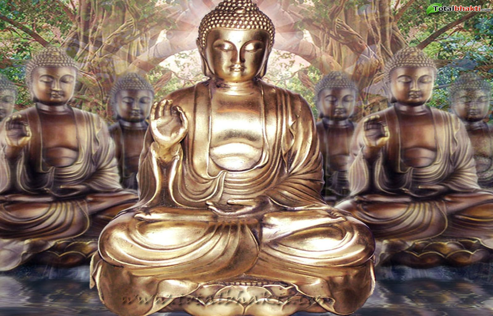 1600x1024 Buddhist Psychological Practices That Can Help Relieve Anxiety ...