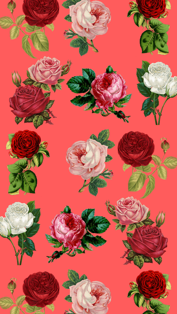 736x1308 7 Pretty Floral iPhone 8 & 8 Plus HD Wallpapers | Preppy Wallpapers