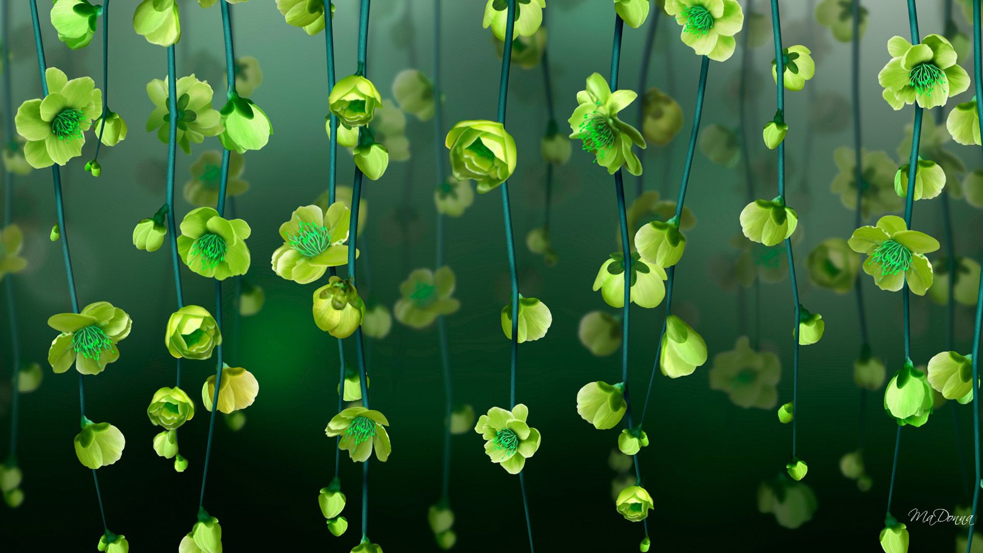 1920x1080 Green Blossoms HD Wallpaper | Background Image | 1920x1080 | ID ...