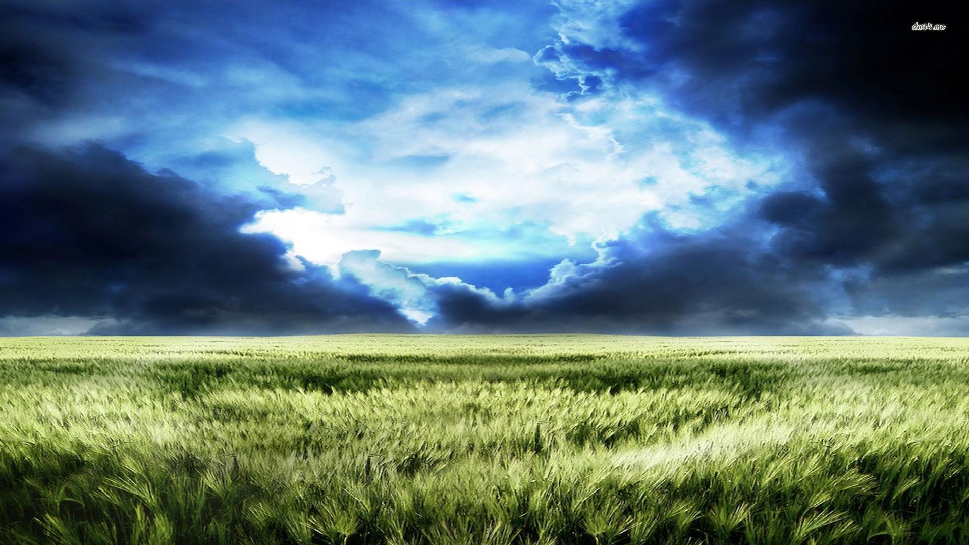 1920x1080 2565-blue-storm-clouds-over-the-field-1920x1080-nature-wallpaper ...