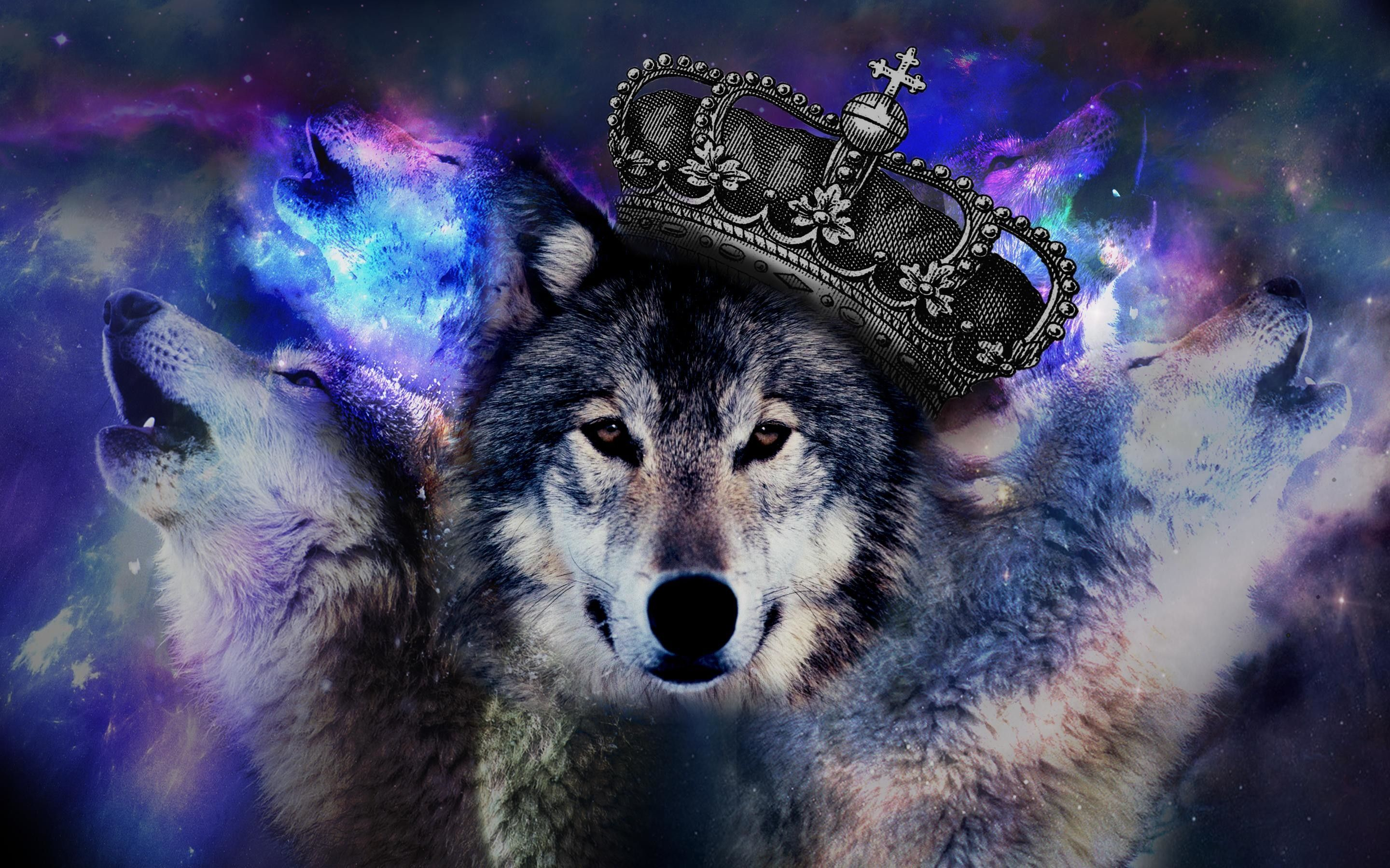 2880x1800 Trippy Wolf Wallpapers (66+ images)