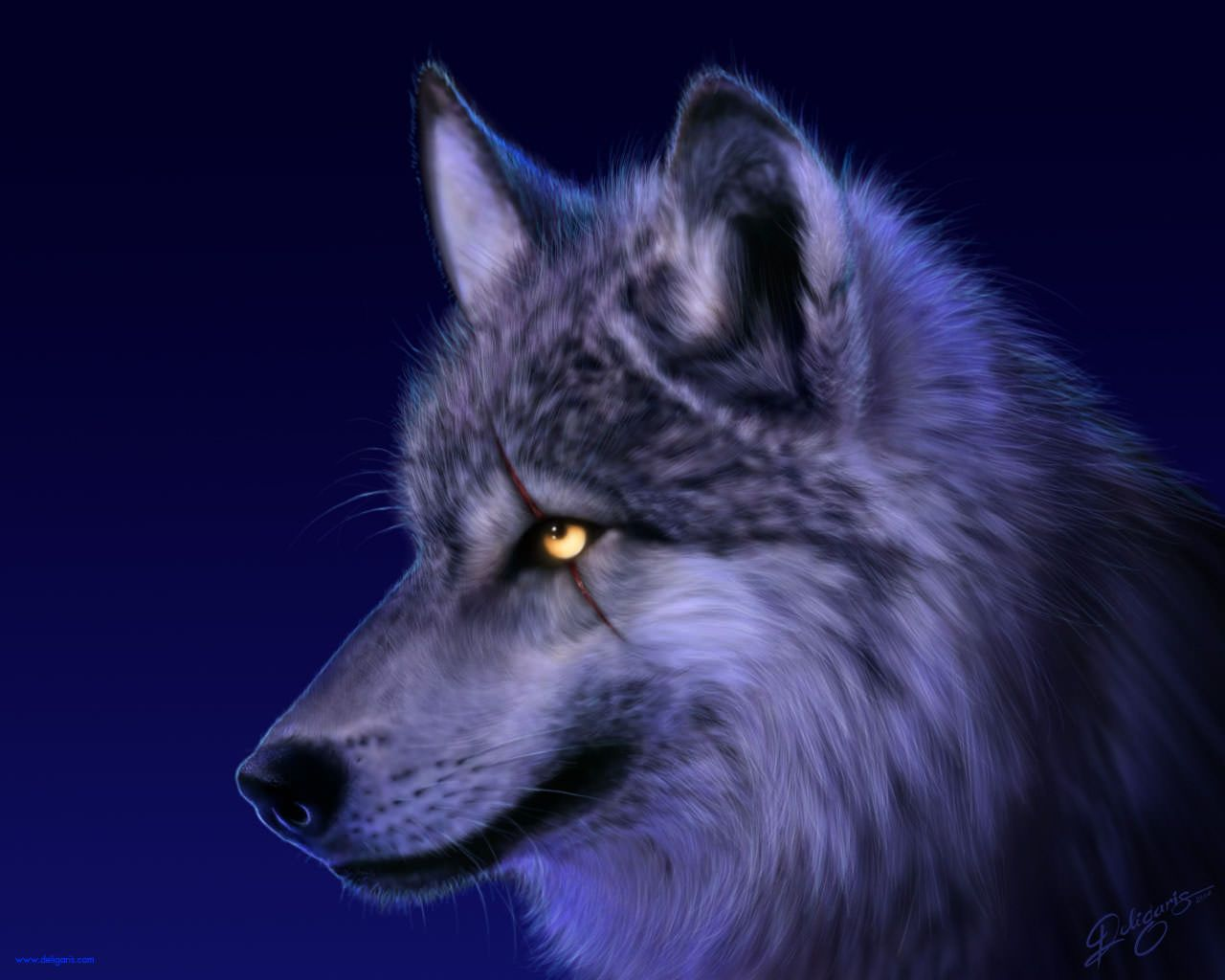 1280x1024 30+ Wolf Backgrounds, Wallpapers, Images | FreeCreatives