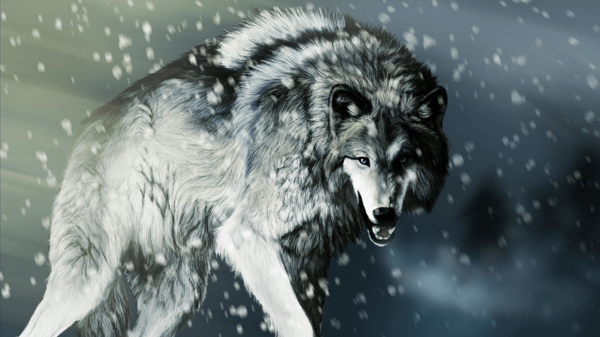 1920x1080 103 4K Ultra HD Wolf Wallpapers | Background Images - Wallpaper Abyss