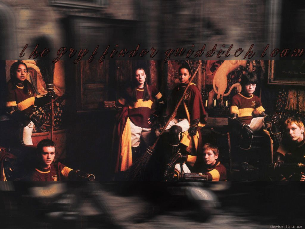 1024x768 Quidditch images Gryffindor Team HD wallpaper and background photos ...