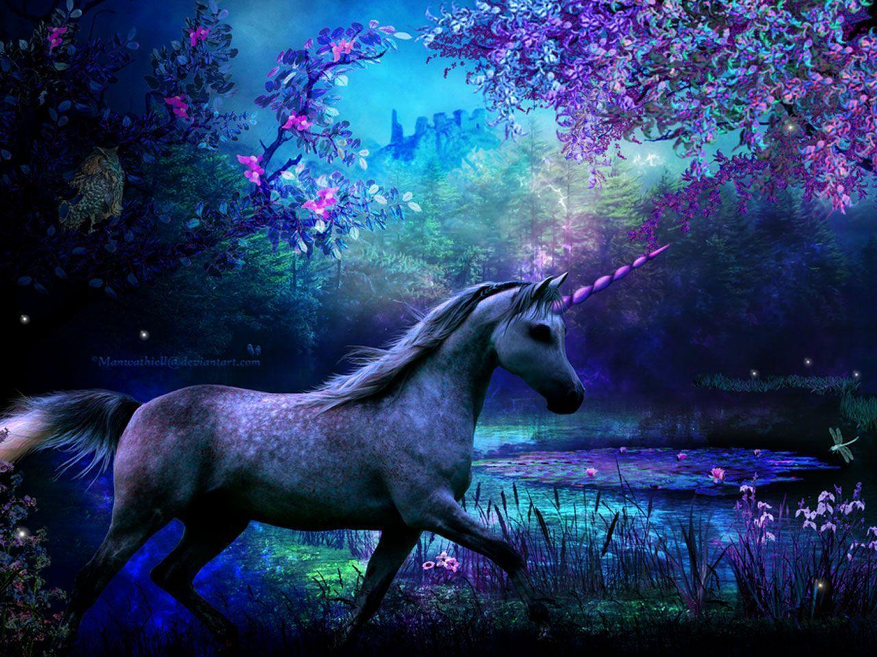 1280x960 Unicorn Wallpapers