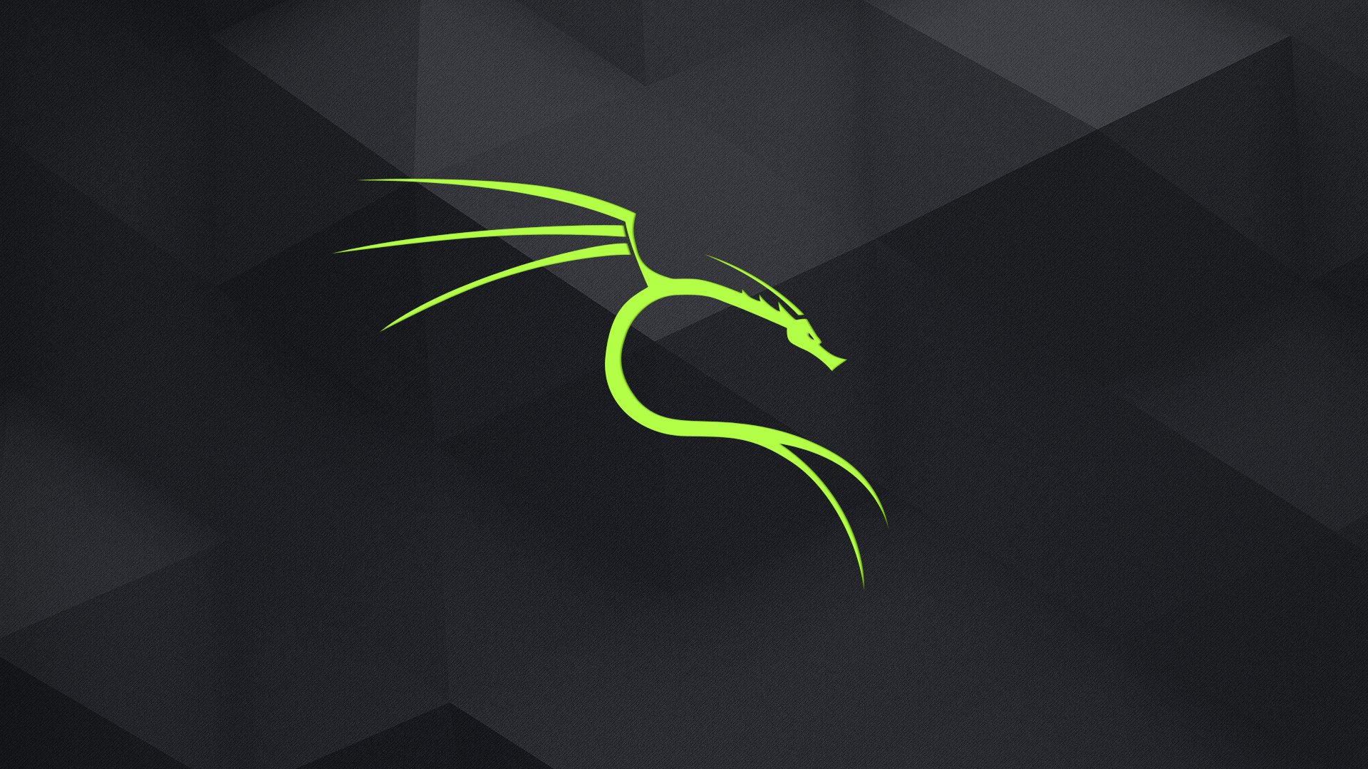 1920x1080 GitHub - dorianpro/kali-linux-wallpapers: A set of dedicated Kali ...