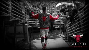 Bulls Wallpaper HD 70+
