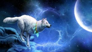 Cool Wolf Wallpapers 59+