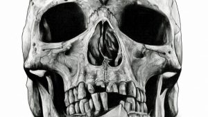Black and White Skulls Wallpaper 59+