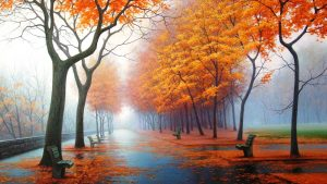 Fall Colors Background 44+