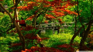 Japanese Garden Wallpapers 65+