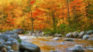 New England Fall Wallpaper 36+