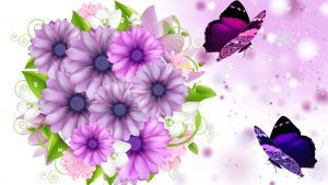 Pink and Purple Butterfly Wallpaper 65+