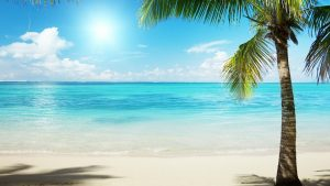 Tropical Background Pictures 54+