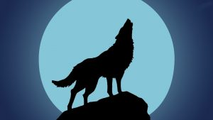 Wolf Howling at the Moon Wallpaper 66+