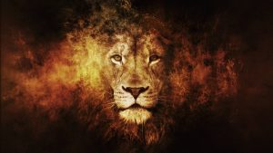 Rainbow Lion Wallpaper 57+