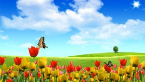 Spring Desktop Backgrounds Wallpapers 75+